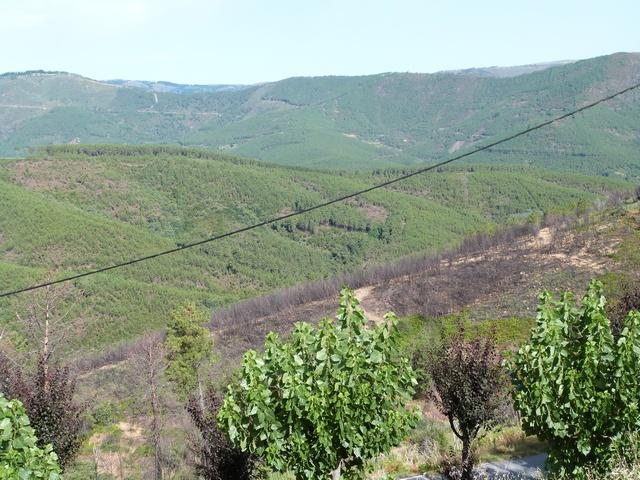 Sarzedo Portugal