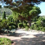 Parc de Saleccia
