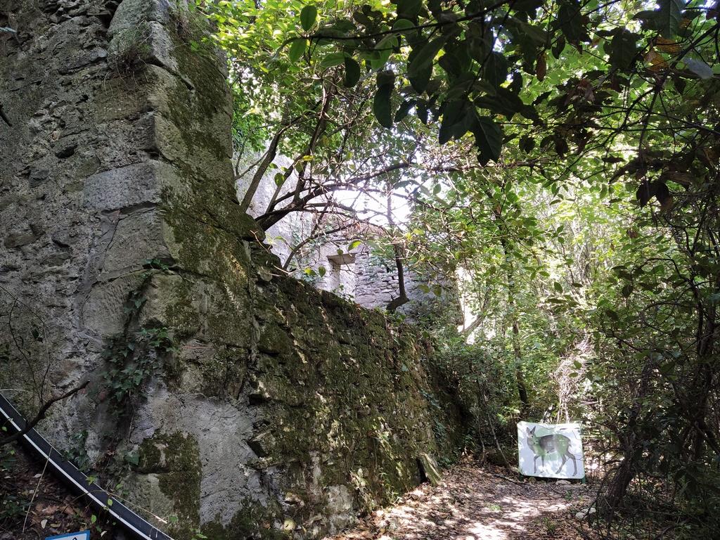 Les cabanes dans les bois - Villalier