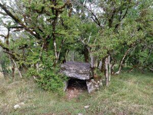 Le dolmen de Joncas